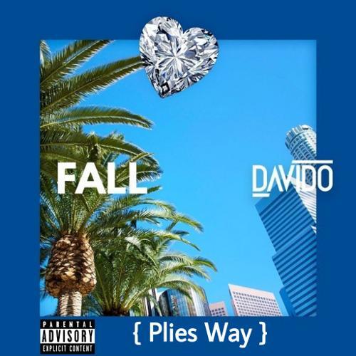 Image of Fall Plies Way